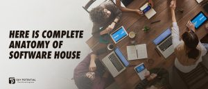 Here-Is-Complete-Anatomy-of-Software-House